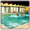 Indoor Year-Round Pool, Whirlpool, Sauna, and Recreation Room