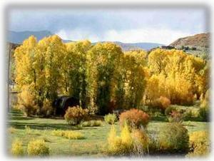 Steamboat is Gorgeous, filled with fall colors, all year round!