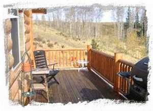 Large Deck, Picnic Tables and Grill