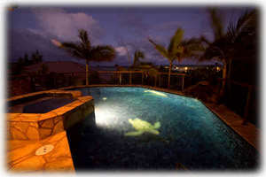 Pool at night: dolphin and turtle mosaic