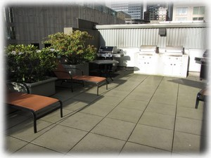 5th floor SE tower roof top deck w/ BBQ's and views